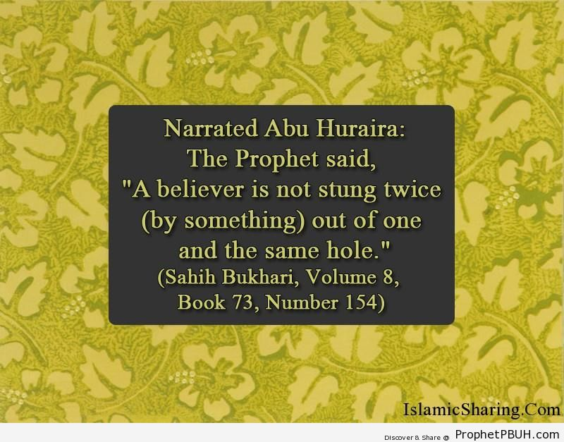 sahih bukhari volume 8 book 73 number 154