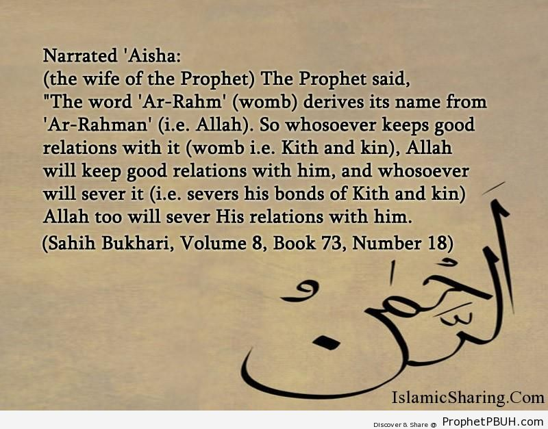 sahih bukhari volume 8 book 73 number 18