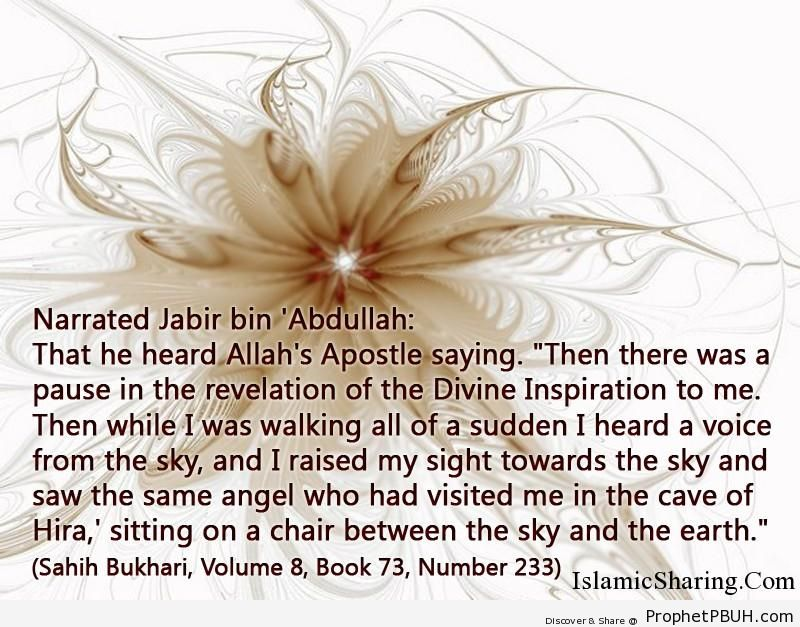 sahih bukhari volume 8 book 73 number 233