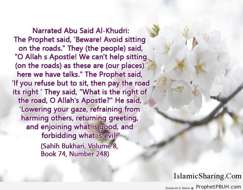 sahih bukhari volume 8 book 74 number 248