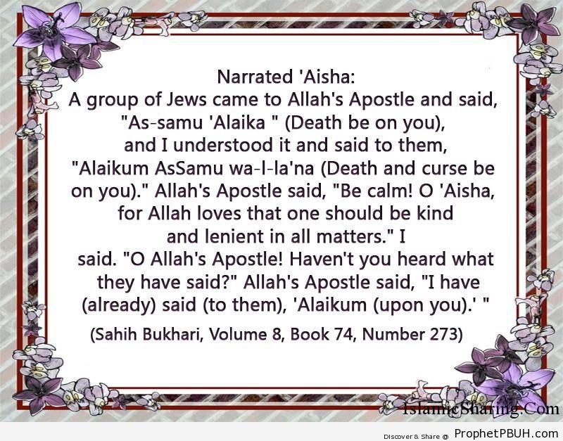 sahih bukhari volume 8 book 74 number 273