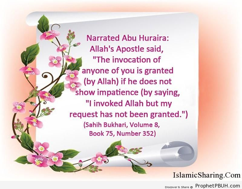sahih bukhari volume 8 book 75 number 352