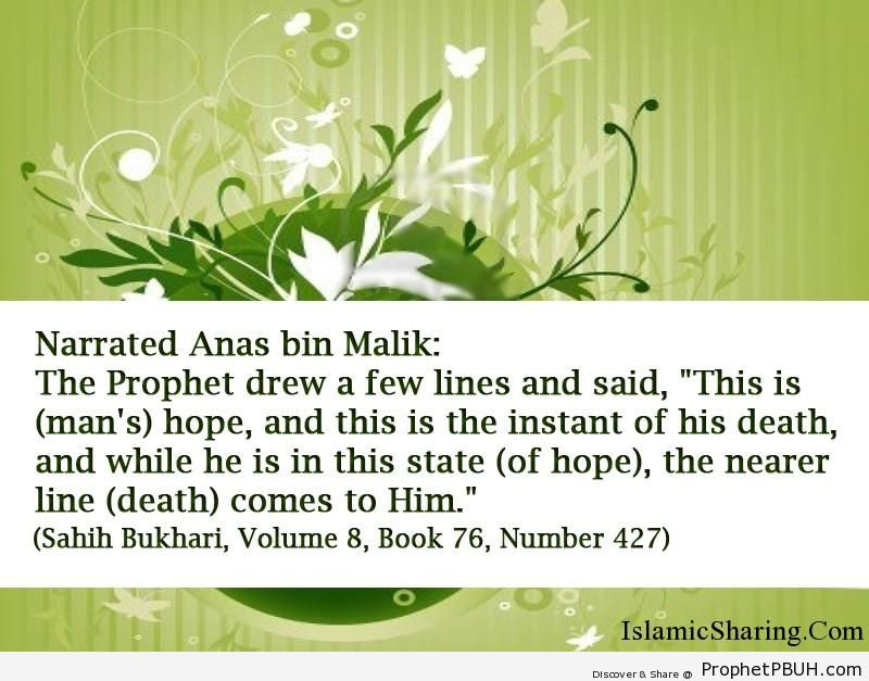 sahih bukhari volume 8 book 76 number 427