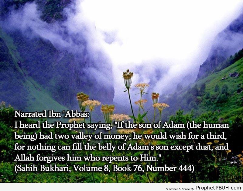sahih bukhari volume 8 book 76 number 444