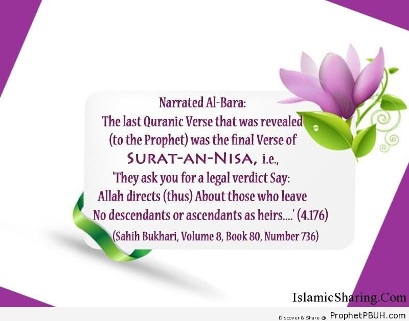 sahih bukhari volume 8 book 80 number 736