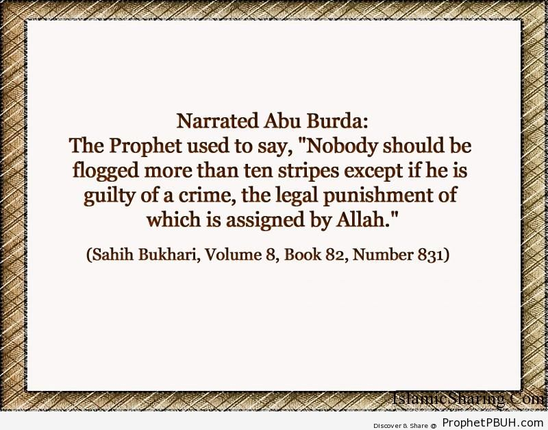 sahih bukhari volume 8 book 82 number 831