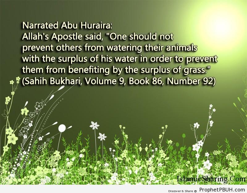 sahih bukhari volume 9 book 86 number 92