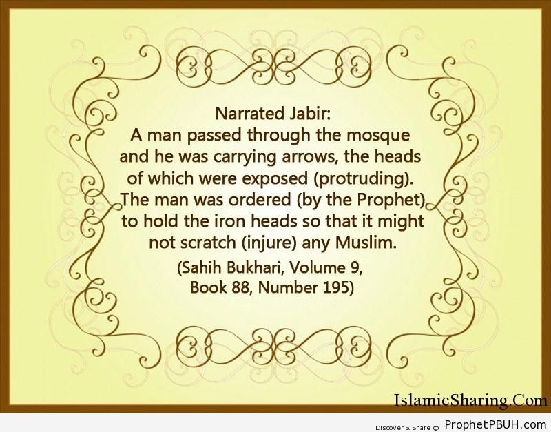 sahih bukhari volume 9 book 88 number 195