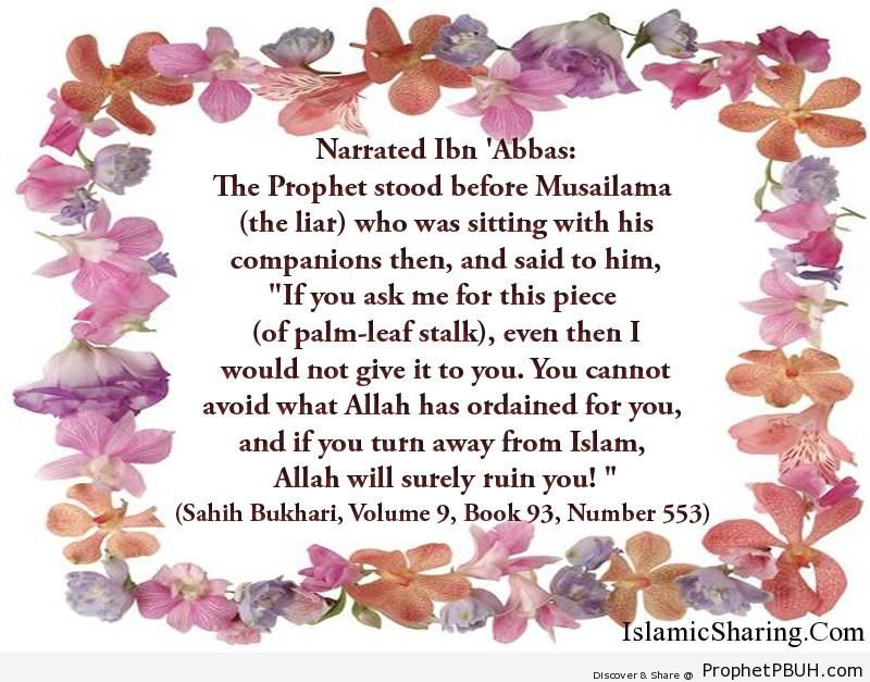 sahih bukhari volume 9 book 93 number 553
