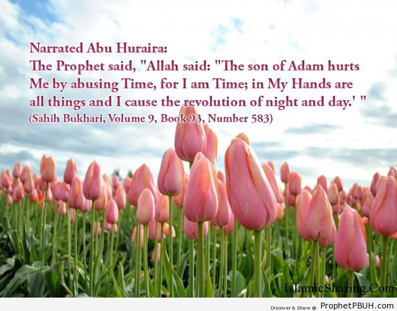sahih bukhari volume 9 book 93 number 583