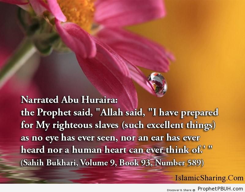 sahih bukhari volume 9 book 93 number 589