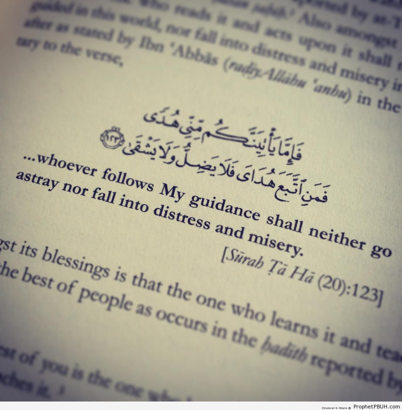 whoever follows My guidance - Quranic Verses