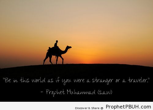 Abdullah ibn Umar reported-... - Islamic Quotes, Hadiths, Duas