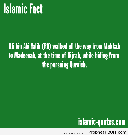 Alis sacrifice - Islamic Quotes, Hadiths, Duas