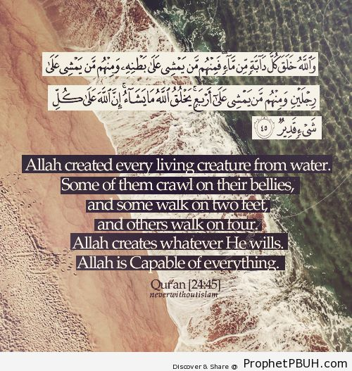 Allah is capable of everything - Islamic Quotes, Hadiths, Duas