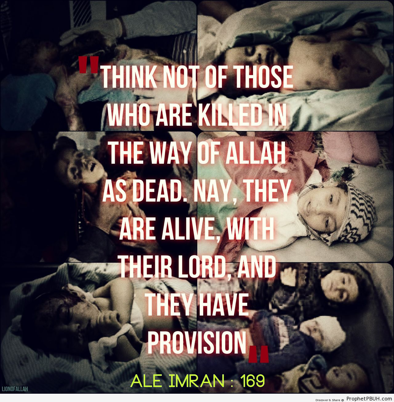 AllahuAkbar, THEY ARE ALIVE, THEY... - Islamic Quotes, Hadiths, Duas-001