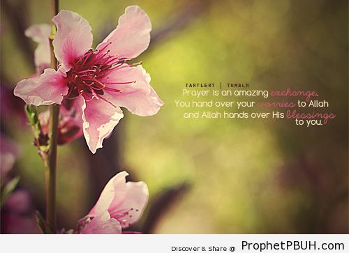 Amazing exchange - Islamic Quotes, Hadiths, Duas
