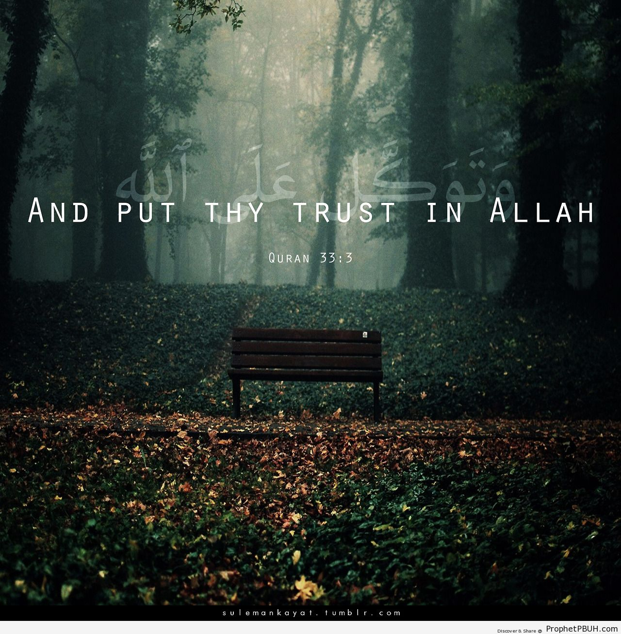 And put thy trust in Allah, and... - Islamic Quotes, Hadiths, Duas