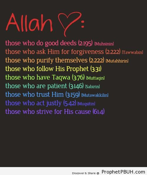 Beautiful Islamic Quotes, Hadiths, Duas Shared By Users (7)