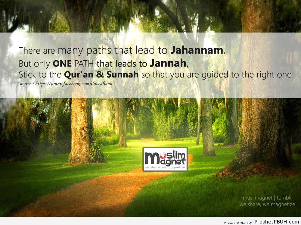 Choose your path! - Islamic Quotes, Hadiths, Duas