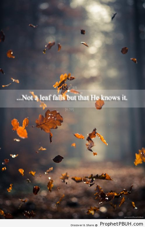 He knows - Islamic Quotes, Hadiths, Duas
