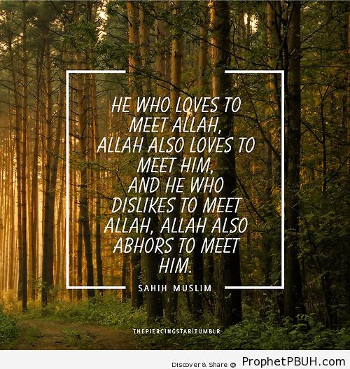 He who loves to meet Allah - Islamic Quotes, Hadiths, Duas