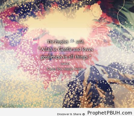 Islamic Quotes, Hadiths, Duas-058
