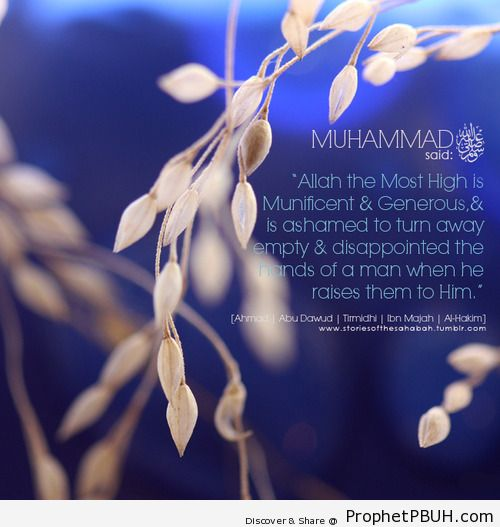 Islamic Quotes, Hadiths, Duas-061