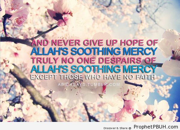 Never give up hope - Islamic Quotes, Hadiths, Duas