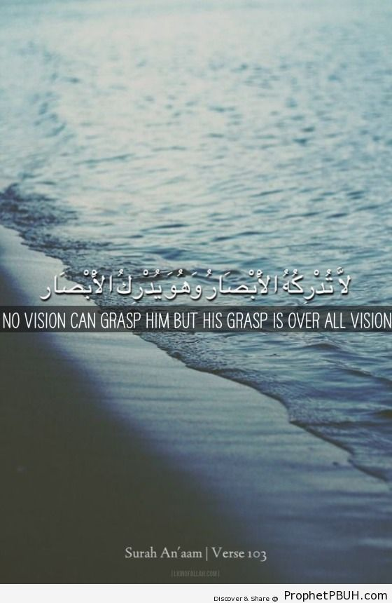 No vision can grasp Him but His... - Islamic Quotes, Hadiths, Duas