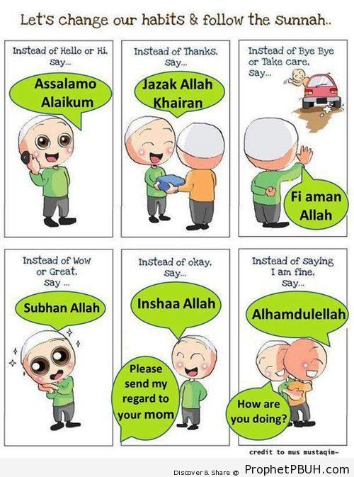 Sunnah - Islamic Quotes, Hadiths, Duas