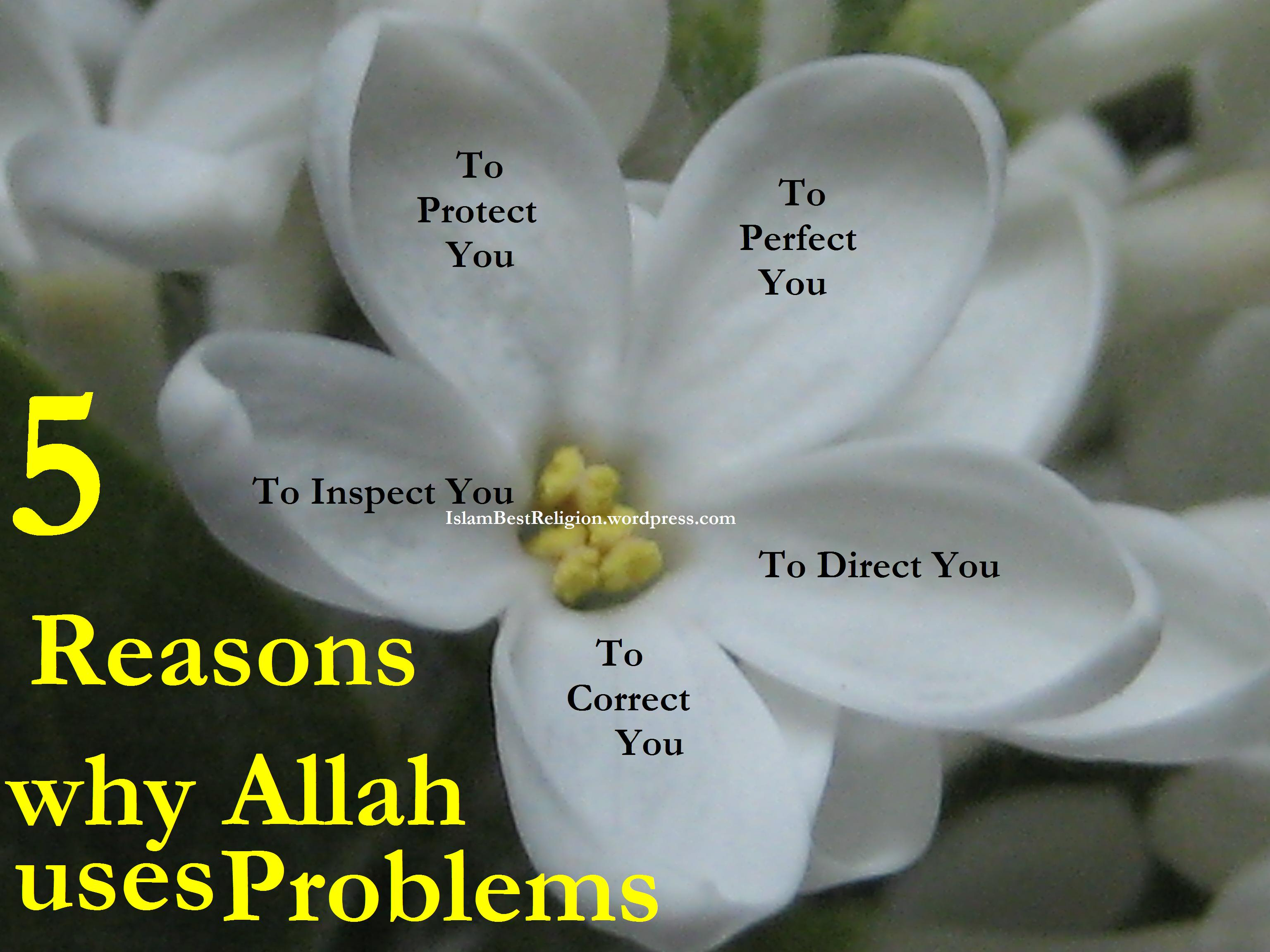 Problems are blessings too