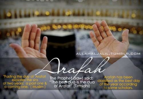 Virtues of the Day of Arafah