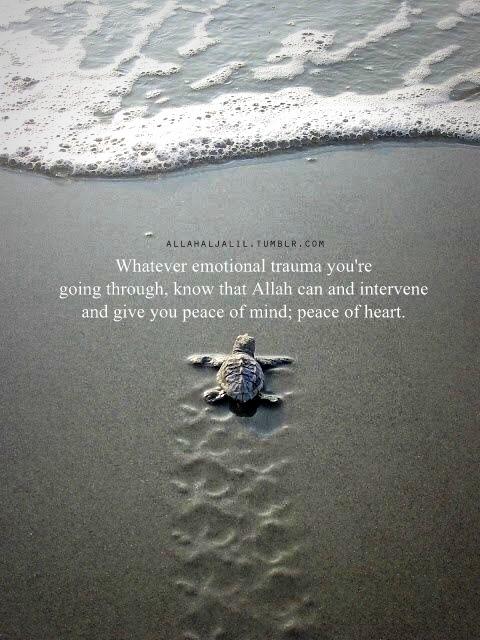 Beautiful Reminder
