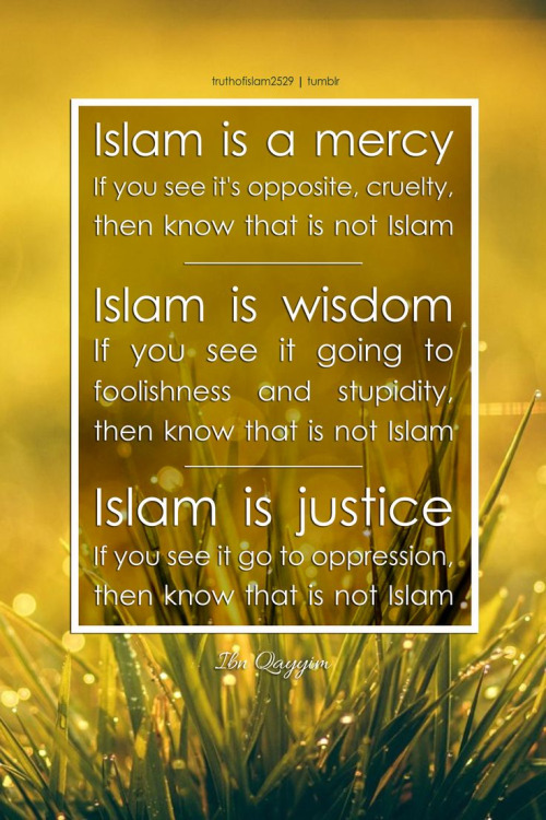 Islam is mercy, wisdom, justice...