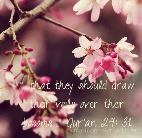 Quran ch 24 verse 31 Veils over bosoms