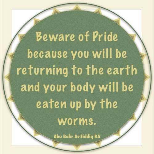 Beware of pride