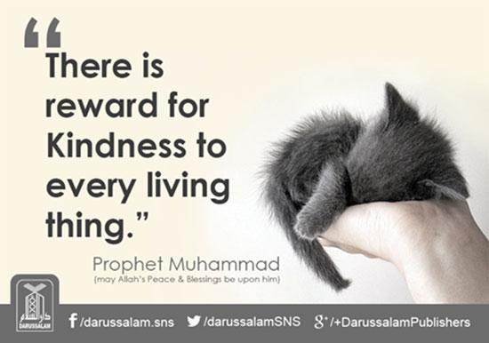 Reward for kindess