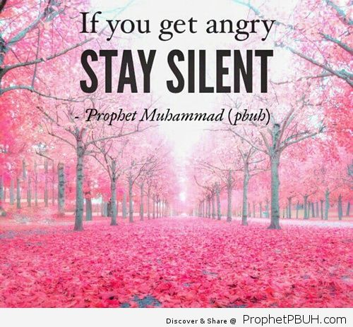 quote angry and islam de Besi _ We Heart It