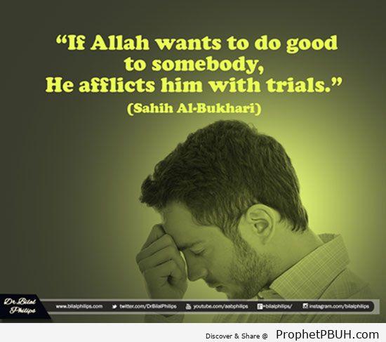 Islamic Quotes 8.