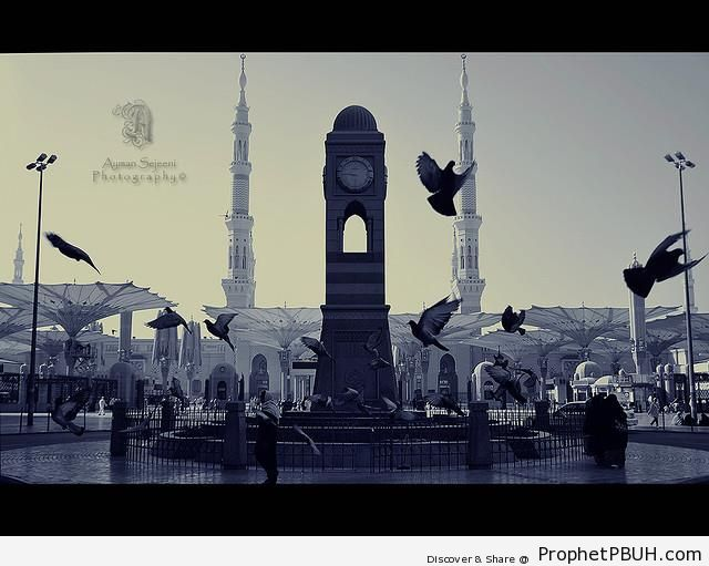 Courtyard, Mosque of the Prophet ï·º in Madinah - Al-Masjid an-Nabawi (The Prophets Mosque) in Madinah, Saudi Arabia