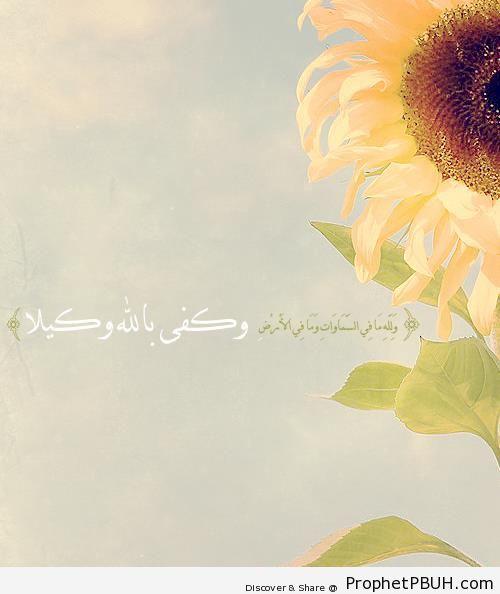 Disposer of Affairs (Quran 4-132; Surat an-Nisa-) - Photos of Flowers