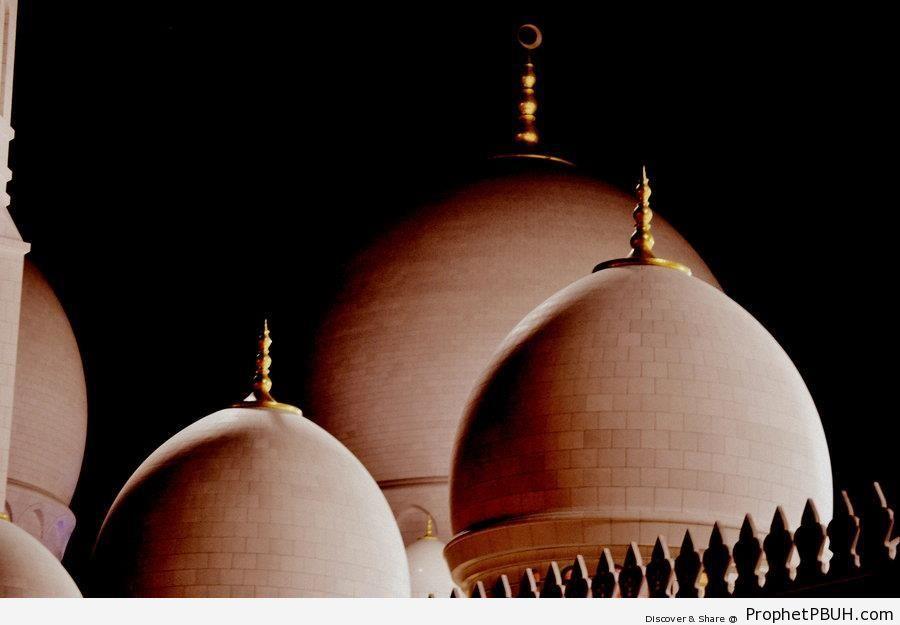 Domes of Sheikh Zayed Grand Mosque at Night (Abu Dhabi, UAE) - Abu Dhabi, United Arab Emirates -Picture