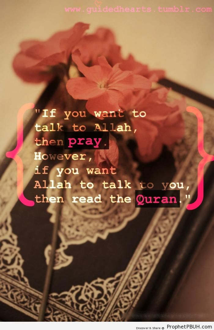 If You Want to Talk to Allah - Dua -Pictures