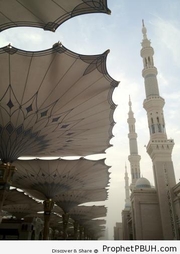 Meaningful Teachings of Islam (3)