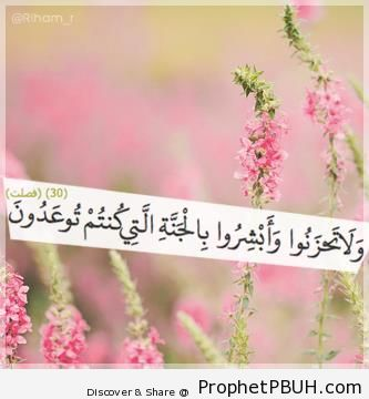 Meaningful Teachings of Islam (84)