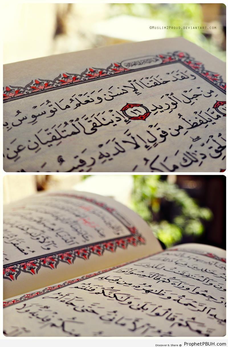 Open Mushaf Showing Surat Qaf (Top) and Surat al-Hadid (Bottom) - Mushaf Photos (Books of Quran)