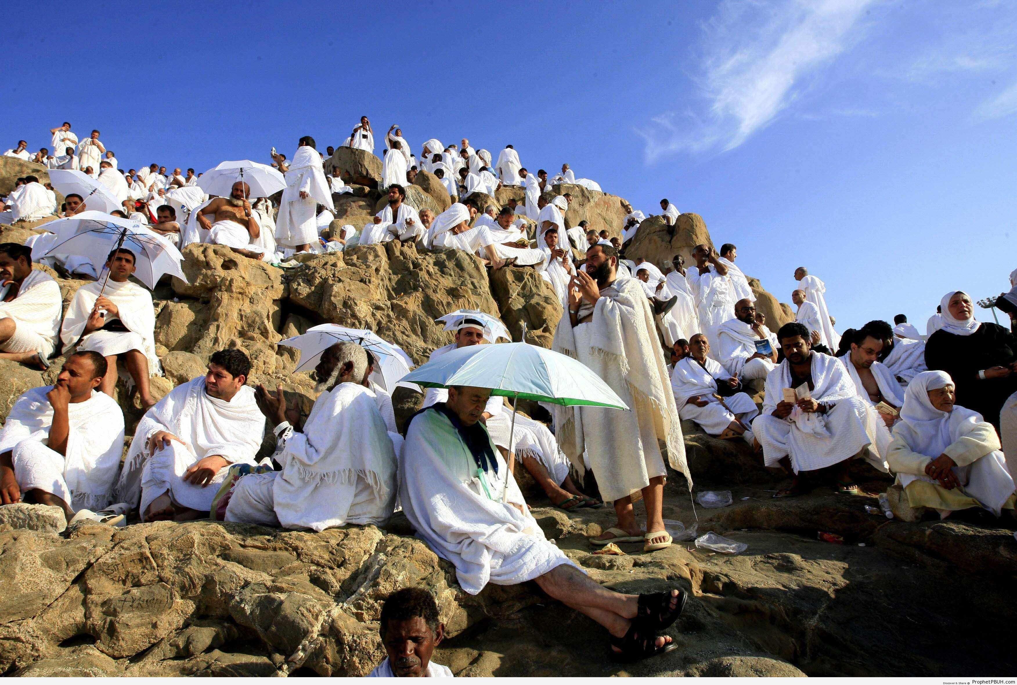 Pilgrims on Mount Arafah - Photos -