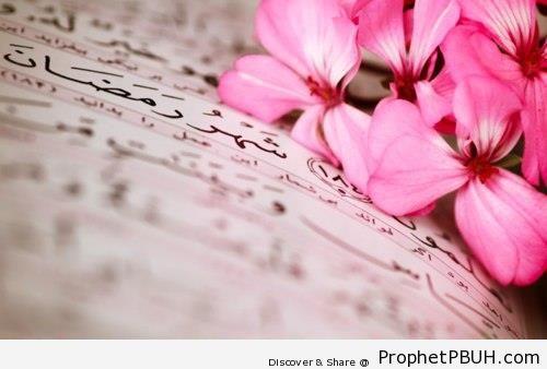 Ramadan and Flowers - Mushaf Photos (Books of Quran)