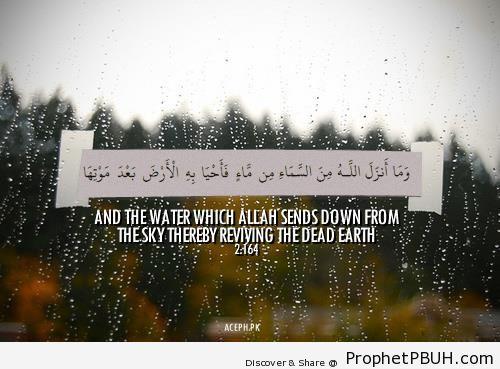 Reviving the Dead Earth (Quran 2-164 - Surat al-Baqarah) - Photos